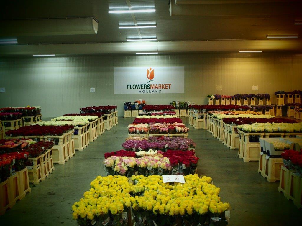Florile: un business competitiv, făcut la rece