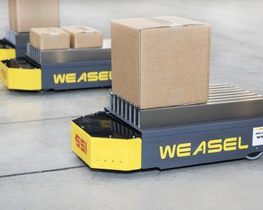 Weasel SSI Schafer