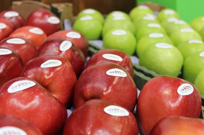 Europa descoperă gustul fructelor moldovenești