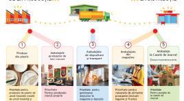 Green Logistics: Până în 2025, Auchan va elimina plasticul din ambalajele produselor marcă proprie